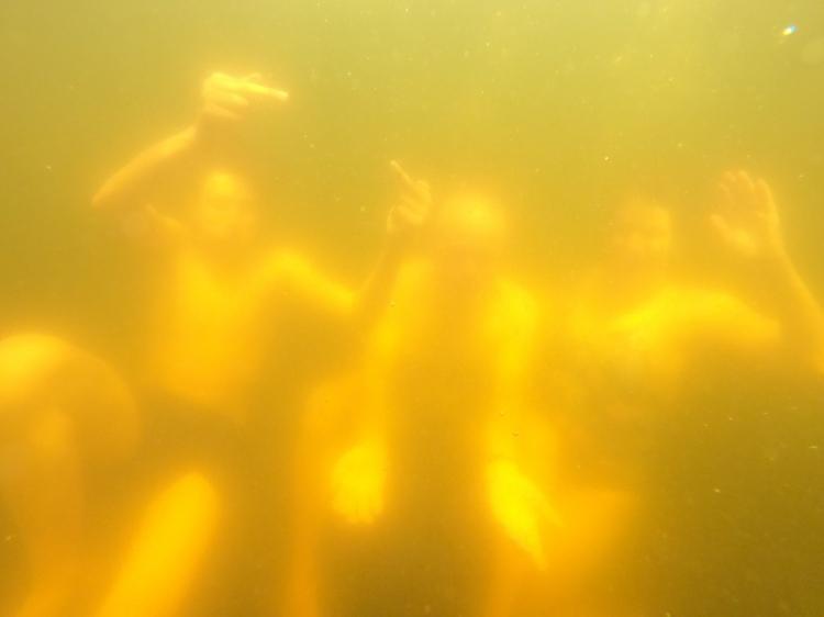 Y a pas que des truites dans le lac des Truites / Crédit photo - Pierrick Aubert